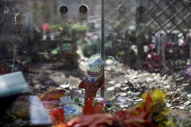 A doll is left at the tomb of pet dog Logan at Baifu pet cemetery ahead of the Qingming Festival on the out skirts of Beijing, China March 26, 2016. (Photo by Jason Lee/Reuters)