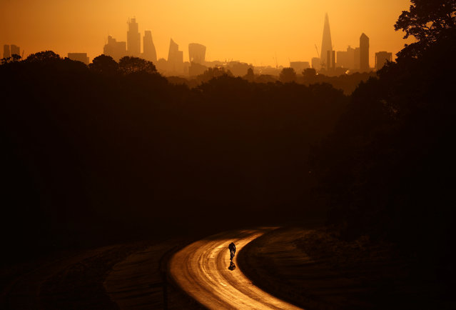The sun rises behind The Shard and the financial district as a cyclist rides through Richmond Park in London, Britain, May 13, 2019. (Photo by Hannah McKay/Reuters)