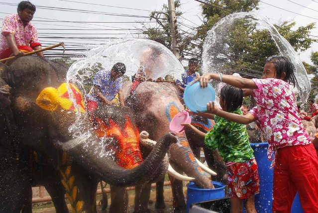 Children splash elephants with water in celebration of the Songkran water festival in Thailand's Ayutthaya province, April 9, 2014. Songkran, the most celebrated festival of the year, marks the start of Thailand's traditional New Year. (Photo by Chaiwat Subprasom/Reuters)