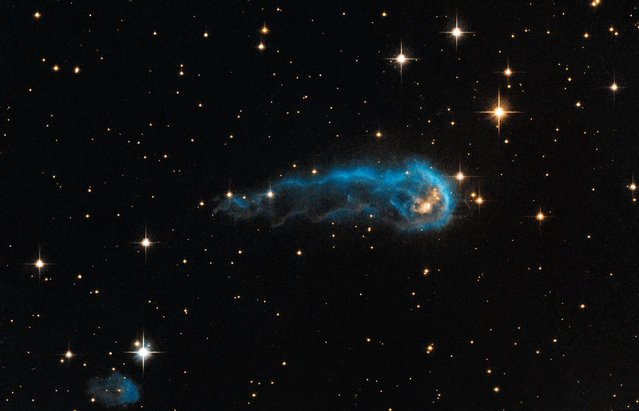 """This NASA Hubble Space Telescope image released April 14, 2014 shows what appears to be a bright blue tadpole swimming through the blackness of space. Known as IRAS 20324+4057, but dubbed """"the Tadpole"""", this clump of gas and dust has given birth to a bright, """"protostar"""", one of the earliest steps in building a star. There are actually multiple protostars within this tadpole's """"head"""", but the glowing yellow one in this image is the most luminous and massive. (Photo by AFP Photo/NASA/JPL-Caltech/ESA/Hubble Heritage Team)"""