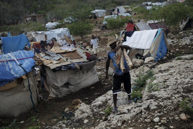 A man carries wooden logs to build a makeshift tent at a refugee camp for Haitians returning from the Dominican Republic on the outskirts of Anse-a-Pitres, Haiti, September 6, 2015. (Photo by Andres Martinez Casares/Reuters)