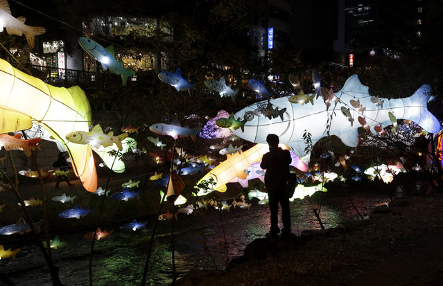 Colorful fish-shaped lanterns are lit up on the eve of Seoul Lantern Festival, which will be held from Nov. 7–23, along Cheonggye stream in Seoul, South Korea, Thursday, November 6, 2014. (Photo by Lee Jin-man/AP Photo)