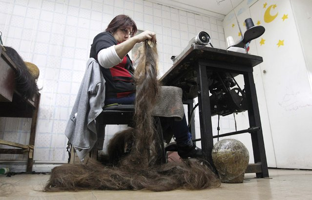 Marcela Reyes makes a natural hair wig to be donated to a girl undergoing chemotherapy for cancer, in Santiago, August 22, 2014. (Photo by Rodrigo Garrido/Reuters)