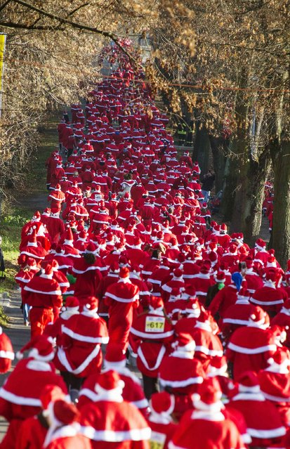 Runners dressed as Father Christmas start in the Nikolaus Lauf (Santa Claus Run) in the east German town of Michendorf, southwest of Berlin December 7, 2014. (Photo by Hannibal Hanschke/Reuters)