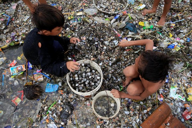 Children take advantage of the gloomy weather to collect washed up clams brought by crashing waves due to strong winds of Super Typhoon Haima, local name Lawin, along the coastal areas in metro Manila, Philippines October 20, 2016. (Photo by Romeo Ranoco/Reuters)
