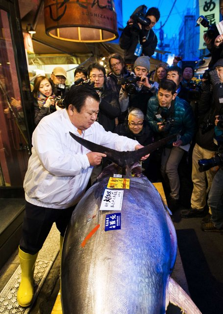 The President of the sushi restaurant chain Sushi Zanmai, Kiyoshi Kimura, removes the fin of a blue fin tuna outside his main restaurant at the outer Tsukiji market, in Tokyo January 5, 2015. (Photo by Thomas Peter/Reuters)