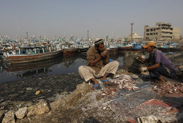 A man pauses to smoke a cigarette while cleaning fish at Karachi's Fish Harbour December 31, 2014. (Photo by Akhtar Soomro/Reuters)