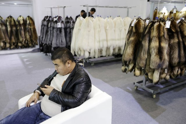 A buyer sit next to the fur of farmed fox on display at the 2015 China Fur and Leather Products Fair in Beijing, January 15, 2015. (Photo by Jason Lee/Reuters)