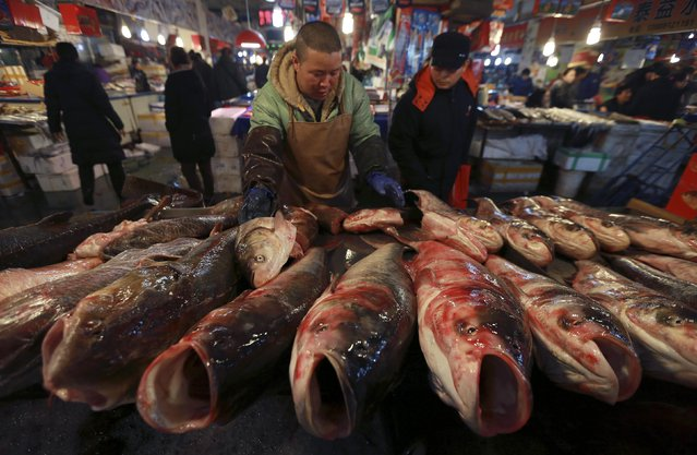 A customer (R) looks on as a vendor arranges fish on display at a stall in a market, in Shenyang, Liaoning province February 10, 2015. China's annual consumer inflation hit a five-year low in January while factory deflation worsened, underscoring deepening weakness in the economy and heaping pressures on policymakers to inject more stimulus to underpin growth. (Photo by Reuters/Stringer)