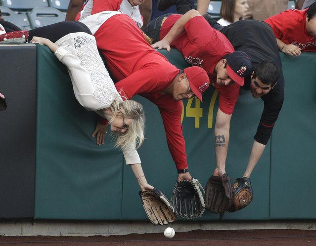 Fans try to grab a ball before the Los Angeles Angels' home opener baseball game against the Kansas City Royals, Friday, April 10, 2015, in Anaheim, Calif. (Photo by Jae C. Hong/AP Photo)