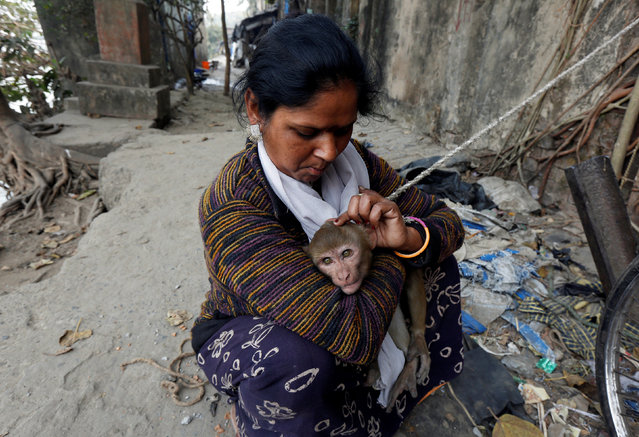 A woman searches for lice in the hair of her pet monkey named Ramu, on the banks of the river Ganges in Kolkata, India, February 2, 2017. (Photo by Rupak De Chowdhuri/Reuters)