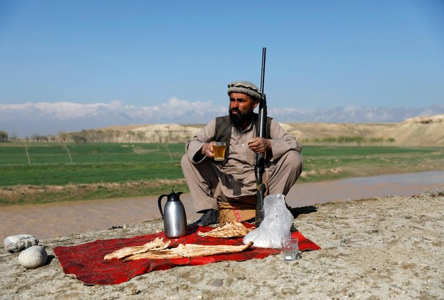 "Jan Agha has breakfast at his hunting field in Bagram, Parwan province, Afghanistan on April 10, 2019. ""I have learned different types of hunting from my ancestors because they were hunters too"", said 49-year-old Agha, a farmer in Parwan province. ""Some of my sons have learned hunting from me and I hope to see at least two of my sons become hunters so my name is remembered and people know my sons after my death"". (Photo by Mohammad Ismail/Reuters)"