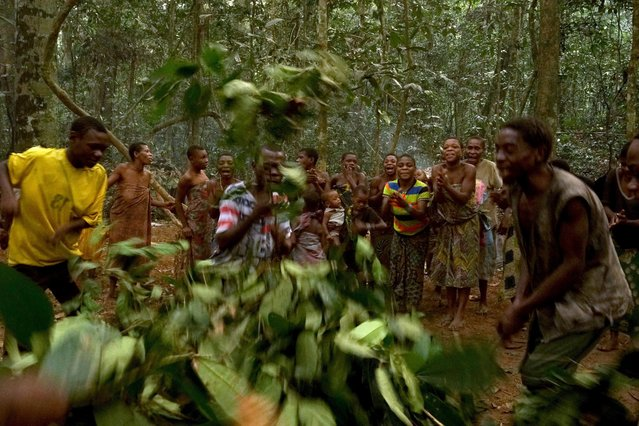 Baka people sing traditional song, in Dzanga-Sangha Reserve, Central African Republic, February 2016. (Photo by Susan Schulman/Barcroft Images)