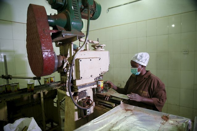 A woman works on a machine at the Cocoa Product processing factory at Ile-Oluji village in Ondo state, southwest Nigeria March 30, 2016. (Photo by Akintunde Akinleye/Reuters)