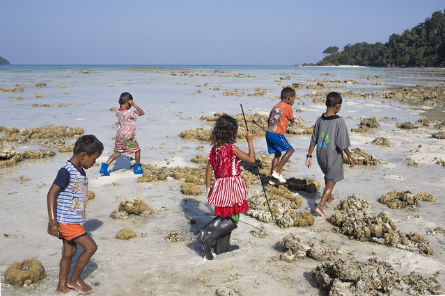 Moken children forage for food during low tide. February 28, 2013 – Ko Surin, Thailand. (Photo by Taylor Weidman/zReportage via ZUMA Press)