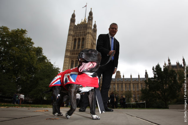 Parliamentary Dog Of The Year Show