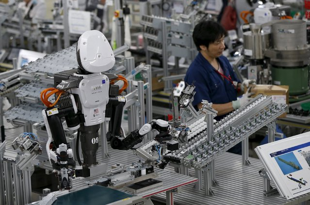 A humanoid robot works side by side with employees in the assembly line at a factory of Glory Ltd., a manufacturer of automatic change dispensers, in Kazo, north of Tokyo, Japan, July 1, 2015. (Photo by Issei Kato/Reuters)