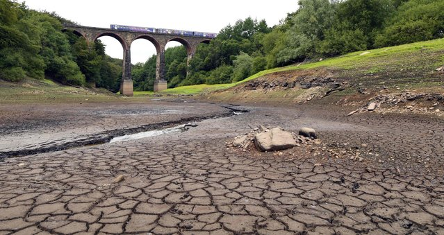 A picture shows a parched section of the Wayoh Reservoir spanned by the Armsgrove Viaduct at Edgworth near Bolton, northwest England, on August 1, 2018 as dry and hot conditions were set to continue in much of Britain. Britain has experienced its driest first half to a summer on record, with temperatures topping 30 degrees Celsius for several days, according to the Met Office. Wayoh reservoir supplies drinking water to the northwest Town of Bolton in Greater Manchester. (Photo by Paul Ellis/AFP Photo)