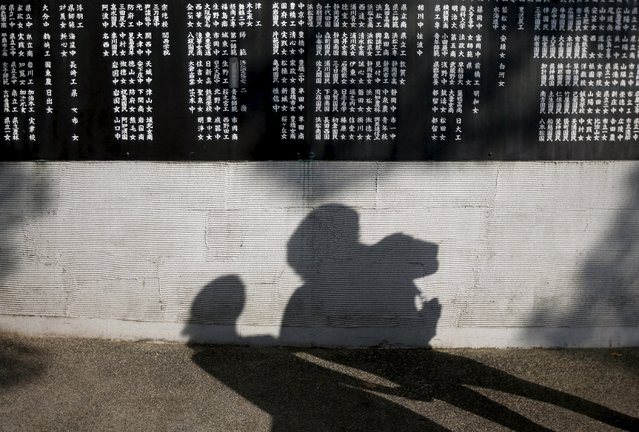 A couple casts shadows on a cenotaph to the mobilized students in Hiroshima, western Japan July 28, 2015. (Photo by Issei Kato/Reuters)