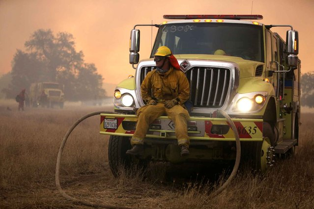 Greg Curry, a firefighter with Riverside Fire Department, watches a backfire from the front bumper of a fire truck at the 6,500 acre Border Fire in eastern San Diego County, California, in the late afternoon on June 22, 2016. (Photo by Bill Wechter/AFP Photo)