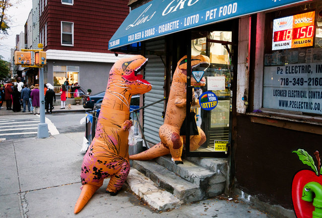 Two kids in dinosaur costumes go trick-or-treating in a store during Halloween in Brooklyn, New York, USA, 31 October 2019. (Photo by Justin Lane/EPA/EFE)