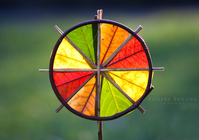 4 Colour Sun Wheel