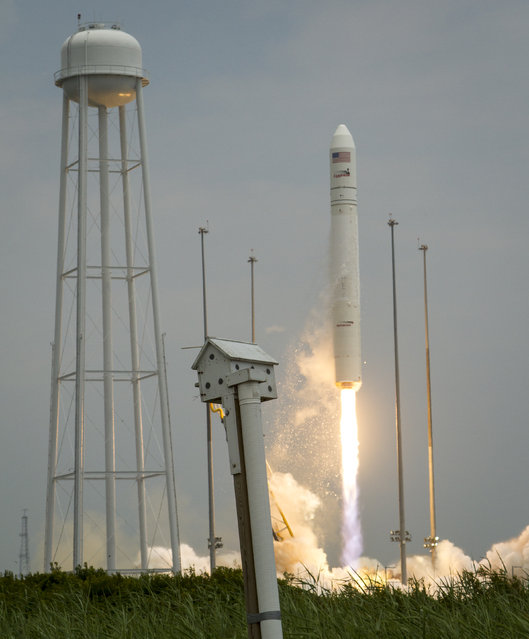 The Orbital Sciences Corporation Antares rocket, with the Cygnus spacecraft onboard, is pictured launching from Pad-0A on July 13, 2014, at NASA's Wallops Flight Facility, Wallops Island, Virginia. The Antares will launch with the Cygnus spacecraft filled with over 3,000 pounds of supplies for the International Space Station, including science experiments, experiment hardware, spare parts, and crew provisions. (Photo by Bill Ingalls/NASA via Getty Images)