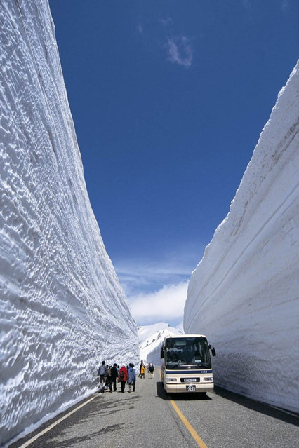 Snow Wall in Japan