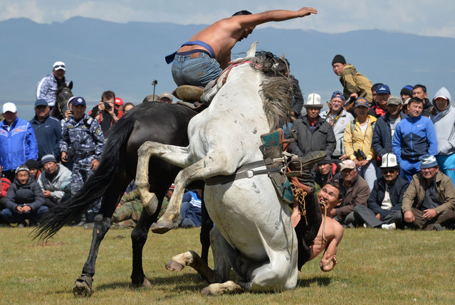 "Kyrgyz men fight on horses as they take part in the ""Oodarysh"" horse fights during a traditional folk festival at Son-Kul lake, 3016 metres above the sea level, some 350 kms from Bishkek on July 29, 2016. The festival marks the 220th anniversary of the national hero Tailak Baatyr. (Photo by Vyacheslav Oseledko/AFP Photo)"