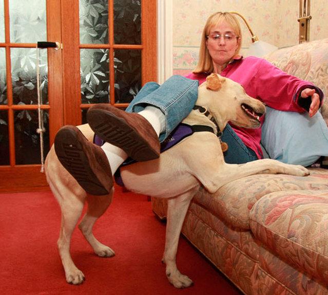 "Kate & Canine Partner ""Byron"""