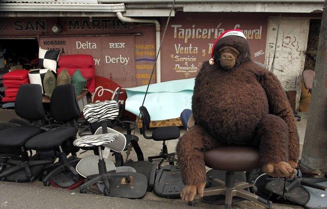 A stuffed gorilla with a Santa Claus hat is seen on a chair at a chair repair workshop in Alajuelita near San Jose November 19, 2014. (Photo by Juan Carlos Ulate/Reuters)