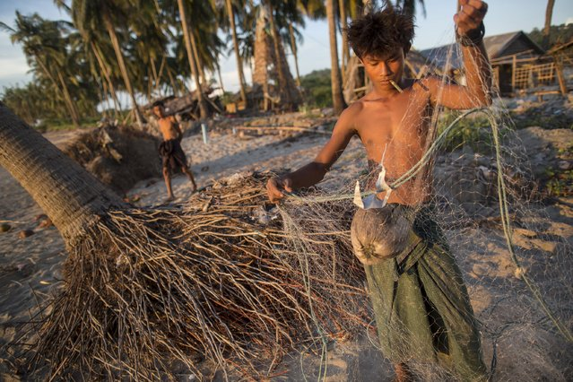 A young man removes debris, including a coconut, from his fishing net on the seashore in Kyaukpyu township, Rakhine state, Myanmar October 5, 2015. (Photo by Soe Zeya Tun/Reuters)