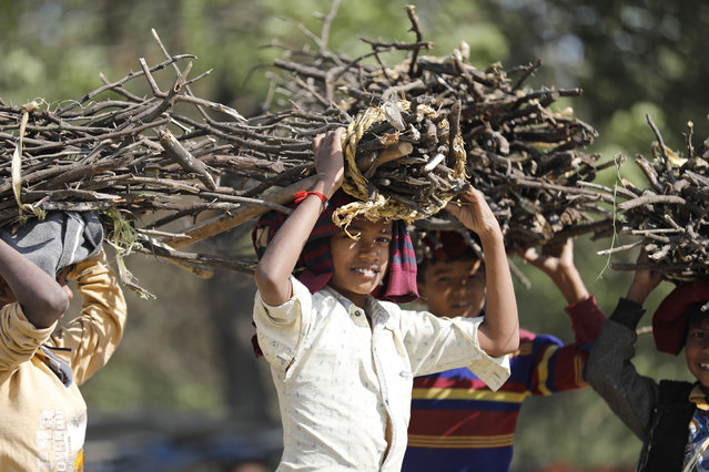 Children carry firewood on their heads and walk homewards on the outskirts of Rae Bareli, India, Thursday, December 17, 2020. (Photo by Rajesh Kumar Singh/AP Photo)