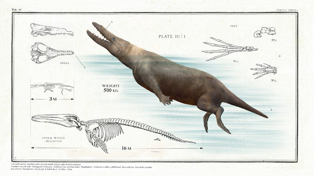 This prehistoric sperm whale was 16m long from nose to tail. (Photo by Sky TV/The Guardian)