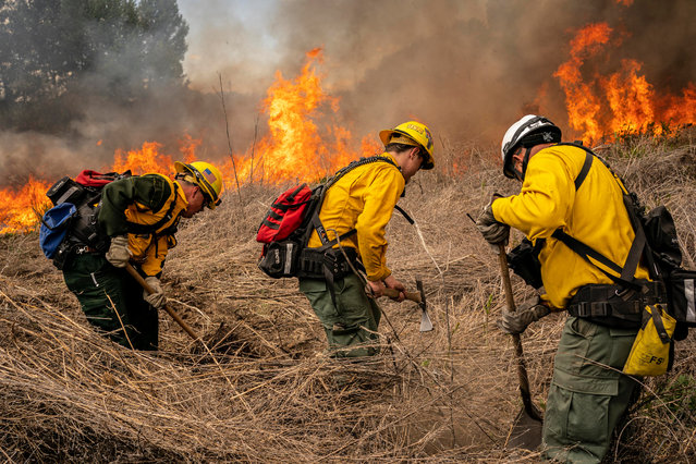 Volunteer firefighters practice with a live burn during a wildfire training course on May 8, 2021 in Brewster, Washington. New recruits and veteran firefighters with the Douglas Okanogan Fire District 15 participated in an annual course for the Incident Qualification Card, also known as the Red Card. (Photo by David Ryder/Getty Images)