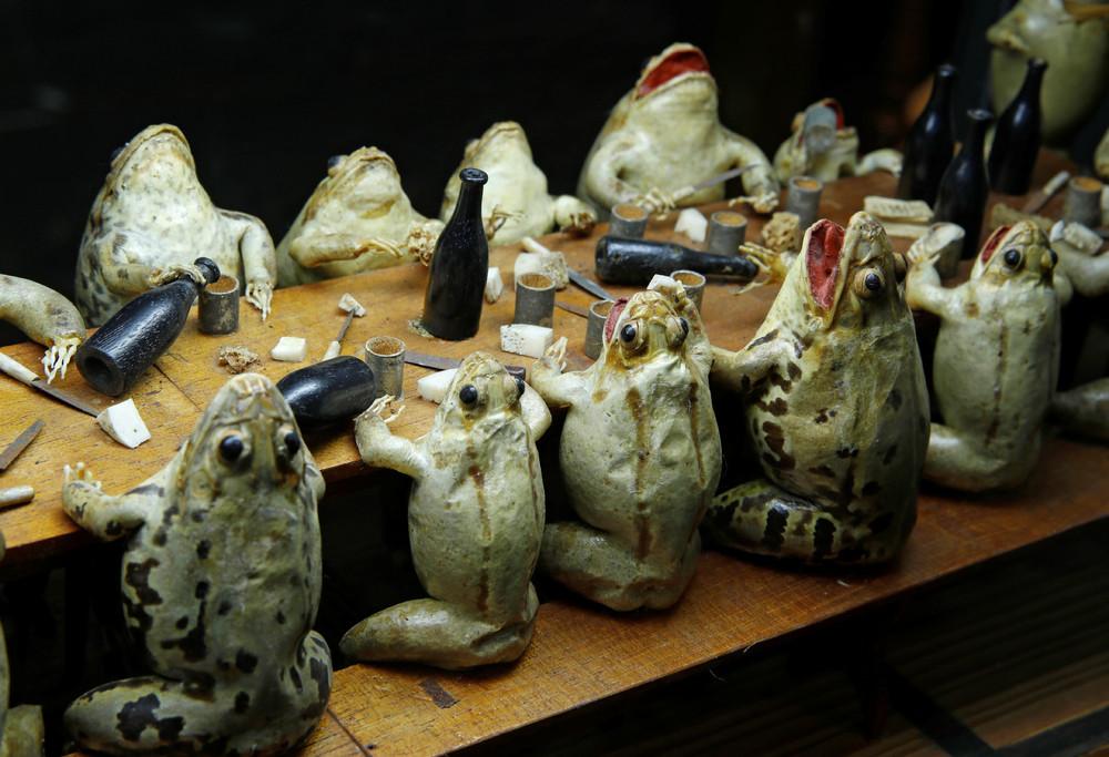 Frog Museum in Switzerland