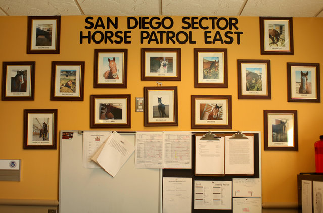Pictures of horses hang on a wall at the U.S. border patrol station in Boulevard, California, U.S., November 12, 2016. (Photo by Mike Blake/Reuters)