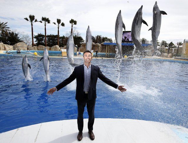 Arnaud Palu, new general Director of Marineland, poses with dolphins during a press visit at the Marineland zoo in Antibes before its reopening, six months after the flooding that affected the French Riviera in October 2015, in Antibes, France, March 17, 2016. (Photo by Eric Gaillard/Reuters)
