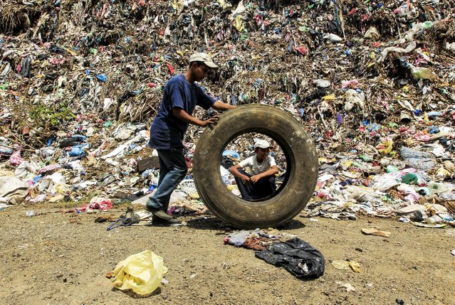 Josue Salazar (19), a student of agronomy, collects discarded tyres in Masaya's municipal garbage dump, Nicaragua, May 7, 2015. Salazar recycles used tyres to make bird figurines and sofas to sell in his shop located on the Panamerican highway. (Photo by Oswaldo Rivas/Reuters)