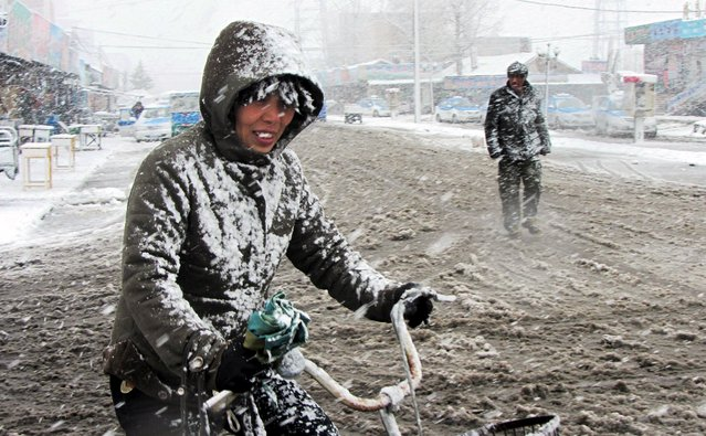 A cyclist rides along a street in the snow in Yakeshi, Inner Mongolia Autonomous Region, China, May 3, 2015. Picture taken May 3, 2015. (Photo by Reuters/China Daily)