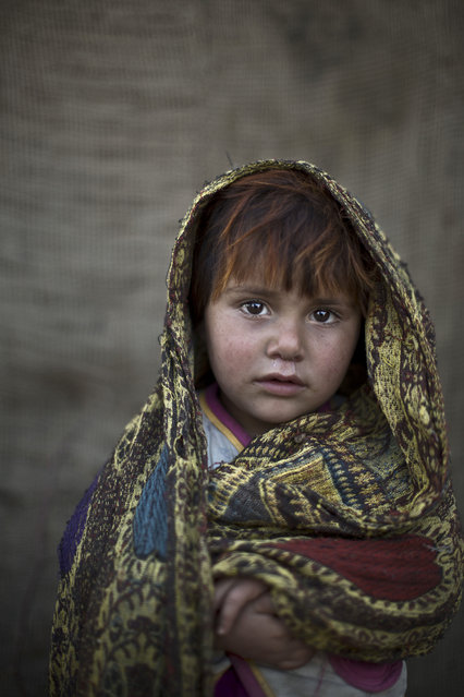In this Friday, January 24, 2014 photo, Afghan refugee girl, Safia Mourad, 4, poses for a picture, while playing with other children in a slum on the outskirts of Islamabad, Pakistan. (Photo by Muhammed Muheisen/AP Photo)