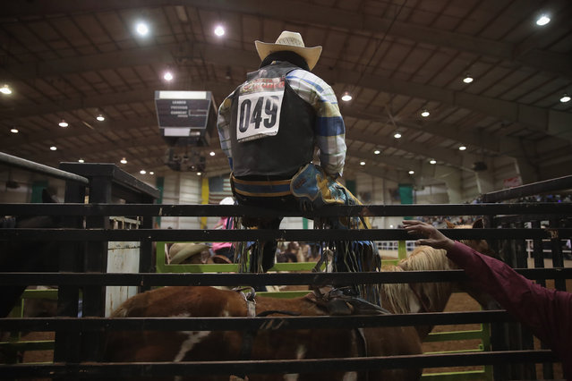A cowboy prepares for the bronc competition at the Bill Pickett Invitational Rodeo on April 1, 2017 in Memphis, Tennessee. (Photo by Scott Olson/Getty Images)