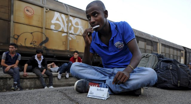An immigrant from India rolls a cigarette at Gevgelija railway station, Macedonia August 19, 2015. (Photo by Ognen Teofilovski/Reuters)