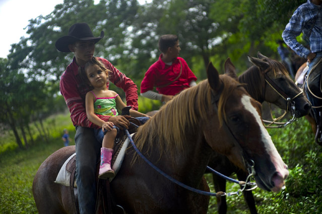 In this July 29, 2016 photo, cowboys watch an improvised rodeo event at a farm in Sancti Spiritus, central Cuba. In the Cuban countryside, many children learn to ride a horse before they learn to ride a bicycle. (Photo by Ramon Espinosa/AP Photo)