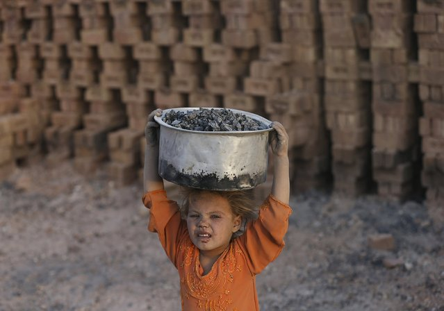 Laila, 8, works at a brick-making factory outside Kabul, Afghanistan August 20, 2015. (Photo by Mohammad Ismail/Reuters)
