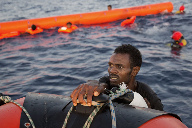 A migrant from Eritrea grabs a RIB after jumping into the water from a crowded wooden boat during a rescue operation at the Mediterranean sea, about 13 miles north of Sabratha, Libya, Monday, August 29, 2016. (Photo by Emilio Morenatti/AP Photo)