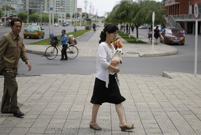 A woman carries a dog while walking along Mirae Scientists Street in Pyongyang, North Korea, Saturday, June 16, 2018. (Photo by Dita Alangkara/AP Photo)