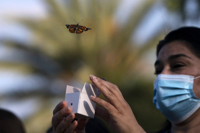 A butterfly is released during an event held to honor health care workers and those who lost loved ones to COVID-19, at Providence St. Jude Medical Center in Fullerton, Calif., Monday, May 10, 2021. (Photo by Jae C. Hong/AP Photo)