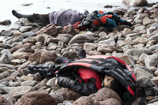 The lifeless bodies of migrants lay on the shoreline near to the Aegean town of Ayvacik, Canakkale, Turkey, Saturday, January 30, 2016. (Photo by Halit Onur Sandal/AP Photo)