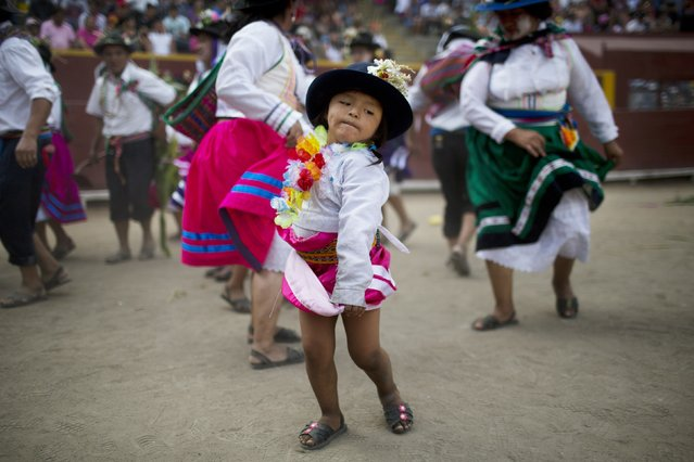 In this Sunday, March 29, 2015 photo, a young performer from the Parinacochas district of Ayacuhco dances in the Vencedores de Ayacucho dance festival, in the Acho bullring in Lima, Peru. The performers sang in the Quechua language, portraying the planting of corn and potatoes. From very young children to elderly people dressed as farmers, tigers, and foxes, as well as members of auto-defense groups, soldiers and police officers, to portray the violence that tore apart their families and communities. (Photo by Rodrigo Abd/AP Photo)